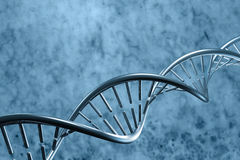 DNA molecules Stock Image