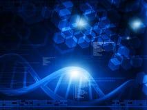 DNA molecules Stock Image