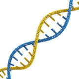 DNA molecules Royalty Free Stock Photo