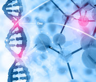 Dna and molecules Royalty Free Stock Photo