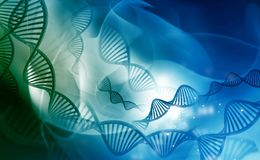 DNA molecules Royalty Free Stock Image