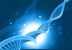 DNA molecules. On blue background. 3d illustration royalty free illustration