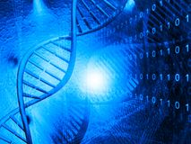 DNA molecules Royalty Free Stock Images