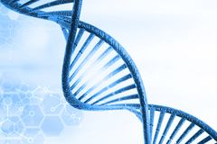 DNA molecules. On medical background royalty free stock photography