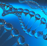DNA molecules model royalty free stock photo