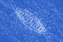 DNA molecules of stars. 3D illustration DNA of stars stock illustration