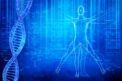 DNA molecules and virtuvian man. 3D image DNA molecules and virtuvian man on blue background for your design stock illustration