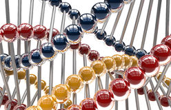 DNA molecules on white background Stock Images