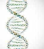 DNA-Molekül Lizenzfreie Stockfotografie
