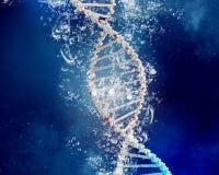 DNA-Molekül im Wasser Stockfoto