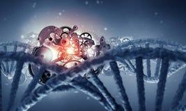 DNA-Molekül und Zahnradmaschine Lizenzfreie Stockfotos