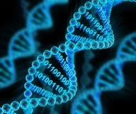 DNA-Moleküle mit binär Code, 3d übertragen Lizenzfreie Stockfotos