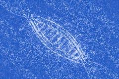 DNA-Moleküle von Sternen Stockbild