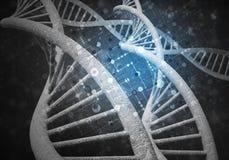 DNA-Molekülhintergrund Lizenzfreies Stockbild