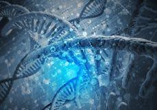 DNA-Molekülhintergrund Stockbild