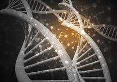 DNA molekuł tło, 3D rendering Zdjęcie Royalty Free
