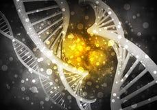 DNA molekuł tło, 3D rendering Obrazy Royalty Free