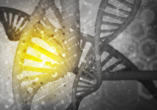 DNA molekuł tło, 3D rendering Obraz Royalty Free