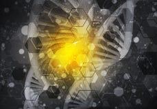 DNA molekuł tło, 3D rendering Zdjęcie Stock
