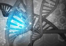 DNA molekuł tło, 3D rendering Fotografia Royalty Free