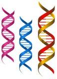 DNA elementy Fotografia Stock