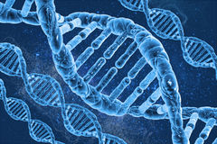 DNA molekuły Fotografia Royalty Free