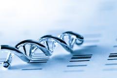 DNA, molekularer Laborversuch lizenzfreie stockfotos