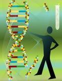 dna-molekyl Arkivfoto