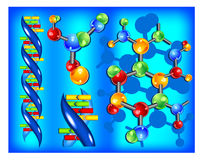 dna-molekyl Royaltyfri Bild