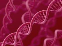 DNA na czerwonym tle Obrazy Stock