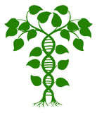 DNA nature plant Stock Image