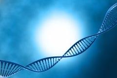 DNA nel bello fondo Immagini Stock Libere da Diritti