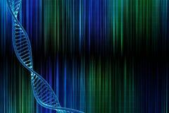 DNA nel bello fondo Fotografia Stock Libera da Diritti