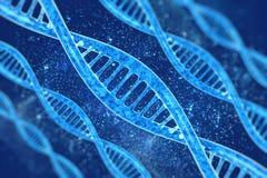 DNA nel bello fondo Immagini Stock