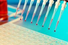 DNA-onderzoek royalty-vrije stock foto's