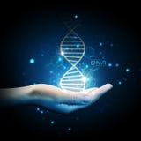DNA op hand royalty-vrije stock fotografie