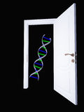DNA and open doorway Royalty Free Stock Photos