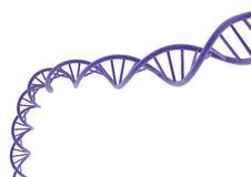 DNA púrpura Imágenes de archivo libres de regalías