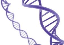 DNA porpora Immagine Stock