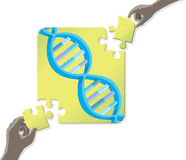 DNA Puzzle Royalty Free Stock Photography