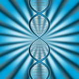 Dna Rays Indicates Genetic Code And Beam Stock Images