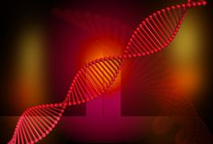 DNA red Stock Images