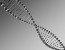 DNA render white and black illustration Royalty Free Stock Photos