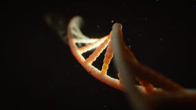 Rotating DNA. Rendering video of a DNA line in high definition
