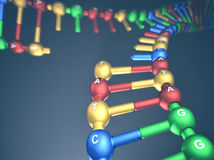 DNA Replication Fork Stock Photo