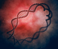 DNA ring. Stylized genetics illustration Stock Photography