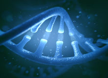 DNA and RNA molecules Stock Image