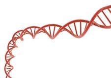 DNA roja Foto de archivo