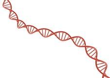 DNA rosso Fotografia Stock