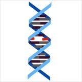 DNA rotto illustrazione vettoriale